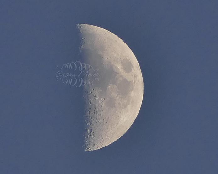 June half moon