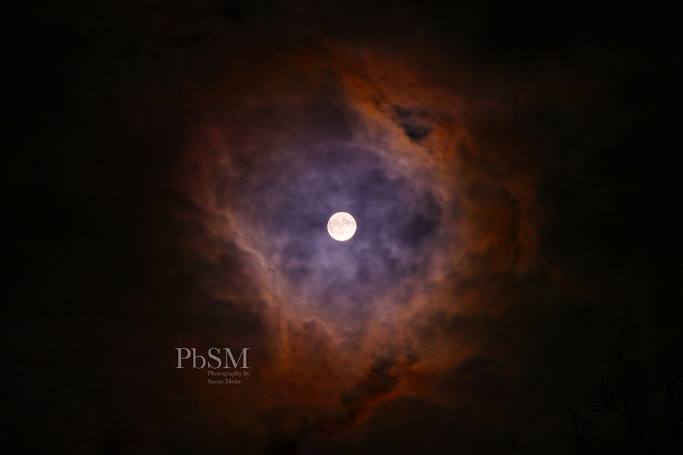 Nov. 2017 Beaver Moon