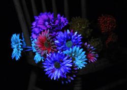 UV Light flowers