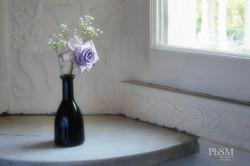Purple Flower in Vase