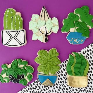 Beautiful cookie designs