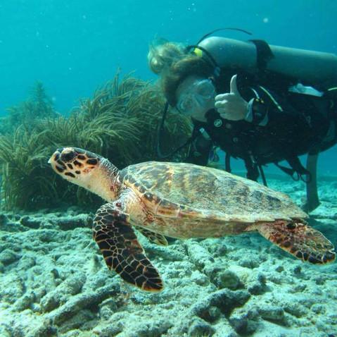 hydra_diving_center_buceo.jpg