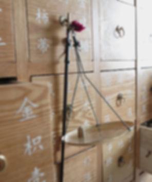 Medecine Chinoise | Acupuncture Traditionnelle Paris 11