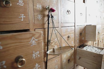 중국 의학 허브