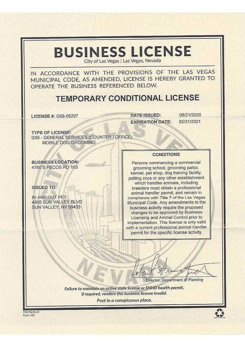 City Of Las Vegas License.jpg