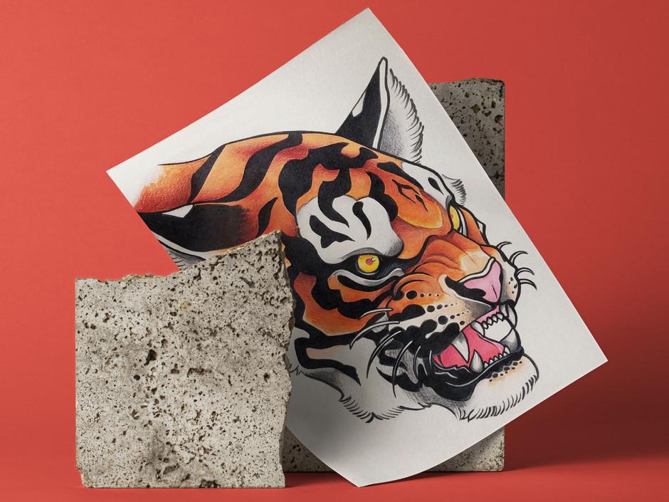 • Tiger Illustration