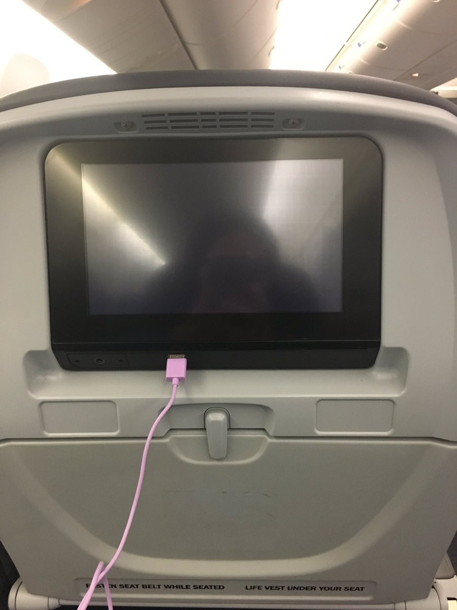 It's a common occurrence. A malfunctioning seat-back screen.
