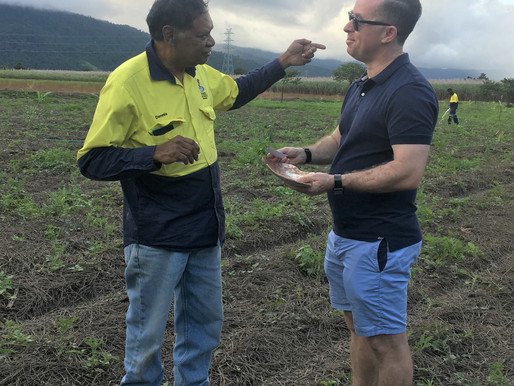 Wanjuru Elder welcomes Qantas CEO to the Russell River catchment