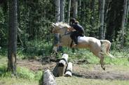 Taylor jumping with Sassy