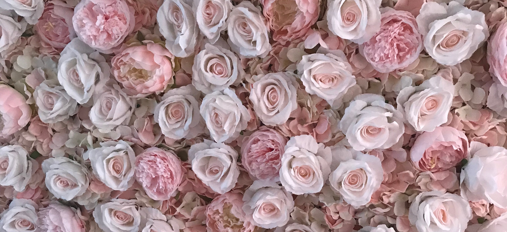 Blush Pink Flower Wall | The Flower Wall Girl