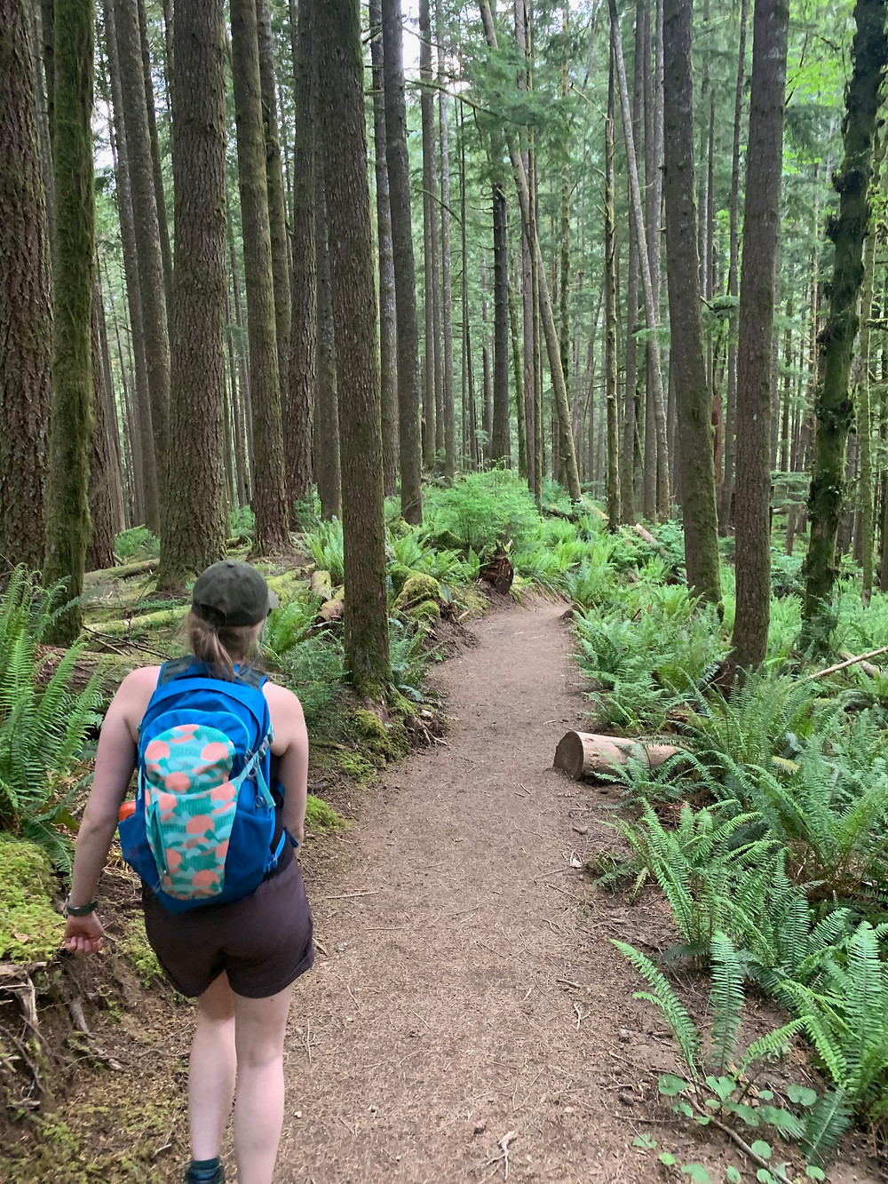 Woman hiking the Garfield Ledges trial