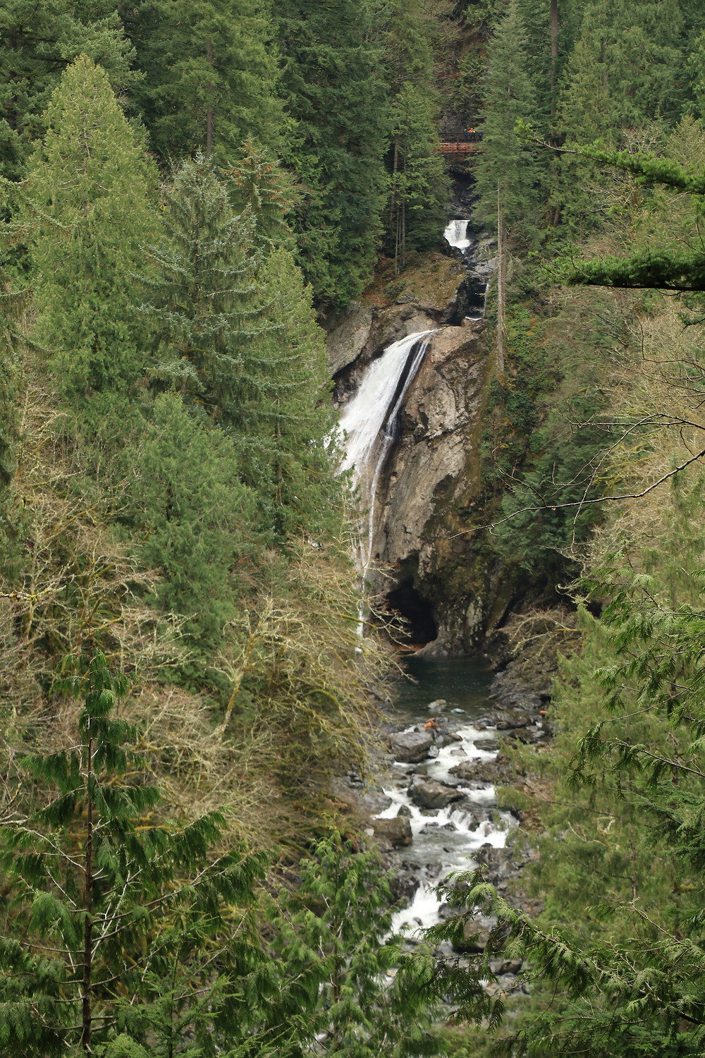 lower and upper twin falls in the distance behind trees