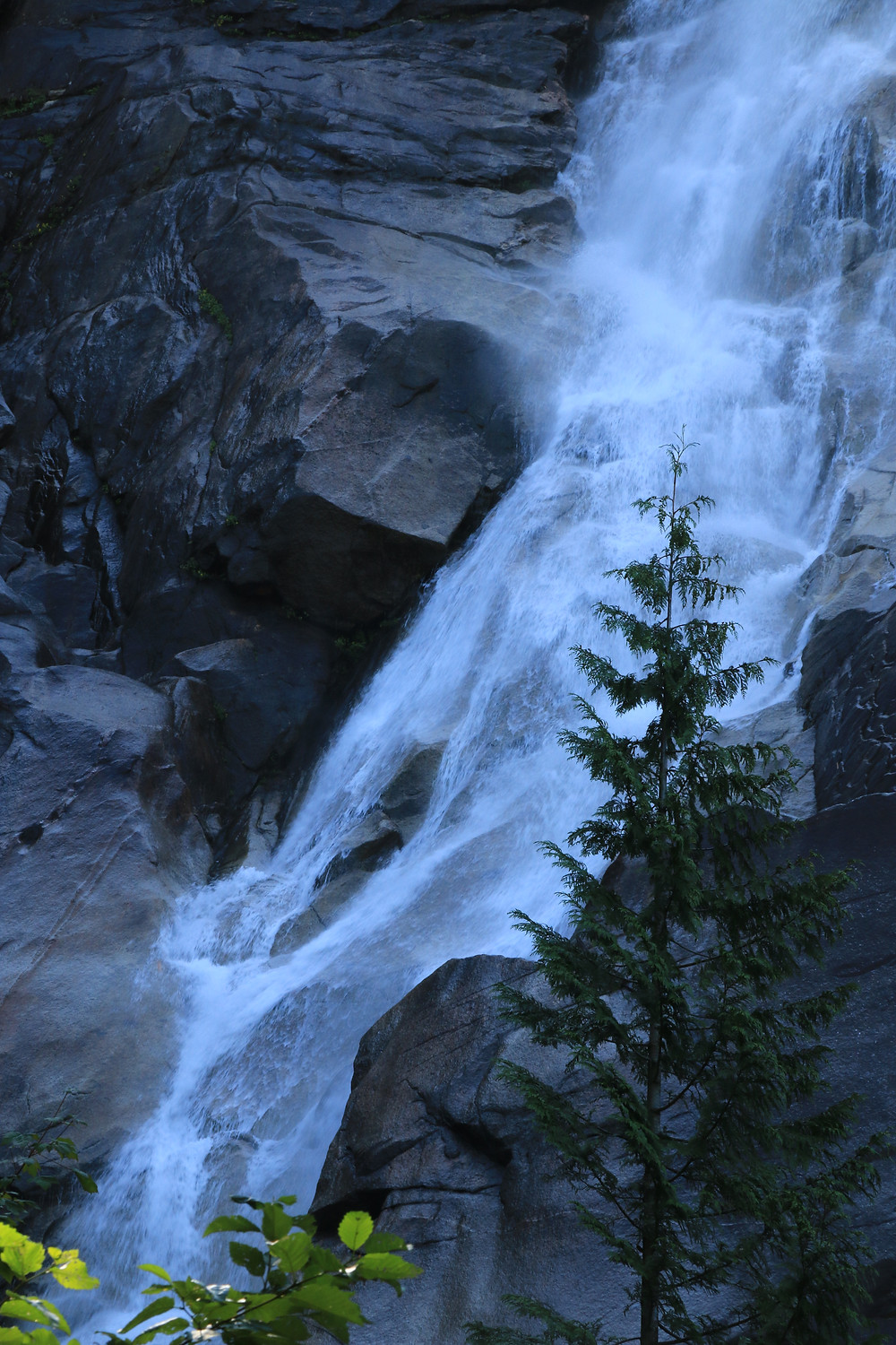 water roaring down Shannon Falls off of the sea to sky highway