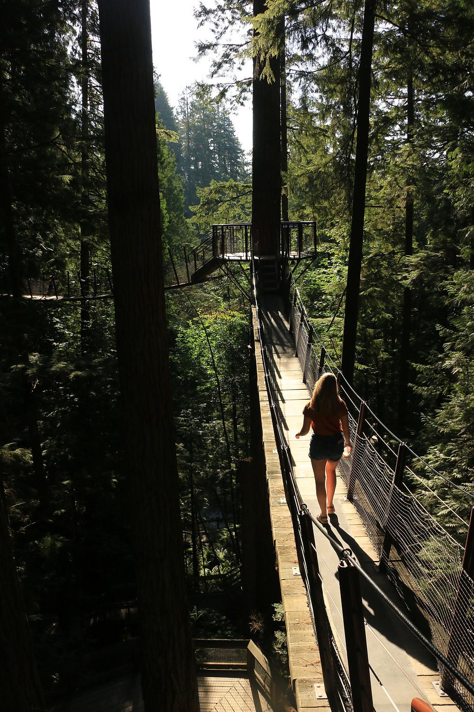 Girl walking a suspended footbridges in Capilano Suspension Bridge Park