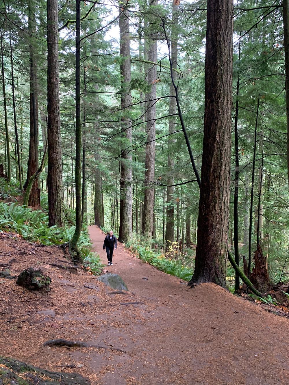 girl walking through woods on twin falls hiking trail