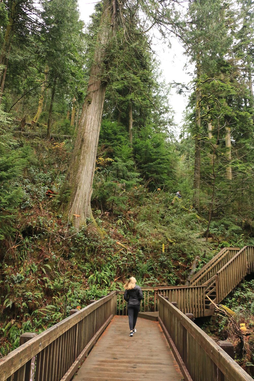 Woman walking along the big bridge on the twin falls trail