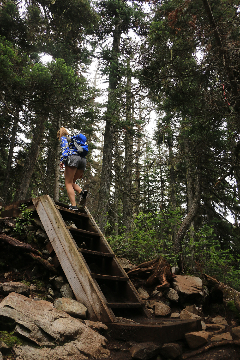 Girl climbing stairs on hiking trail to Joffre Lake
