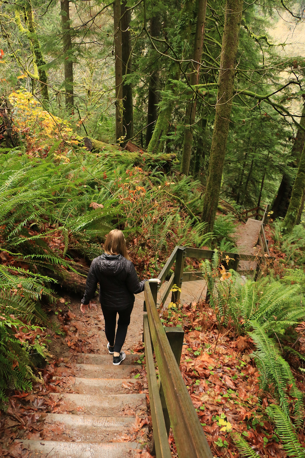 Woman walking down stairs to the lower twin falls overlook