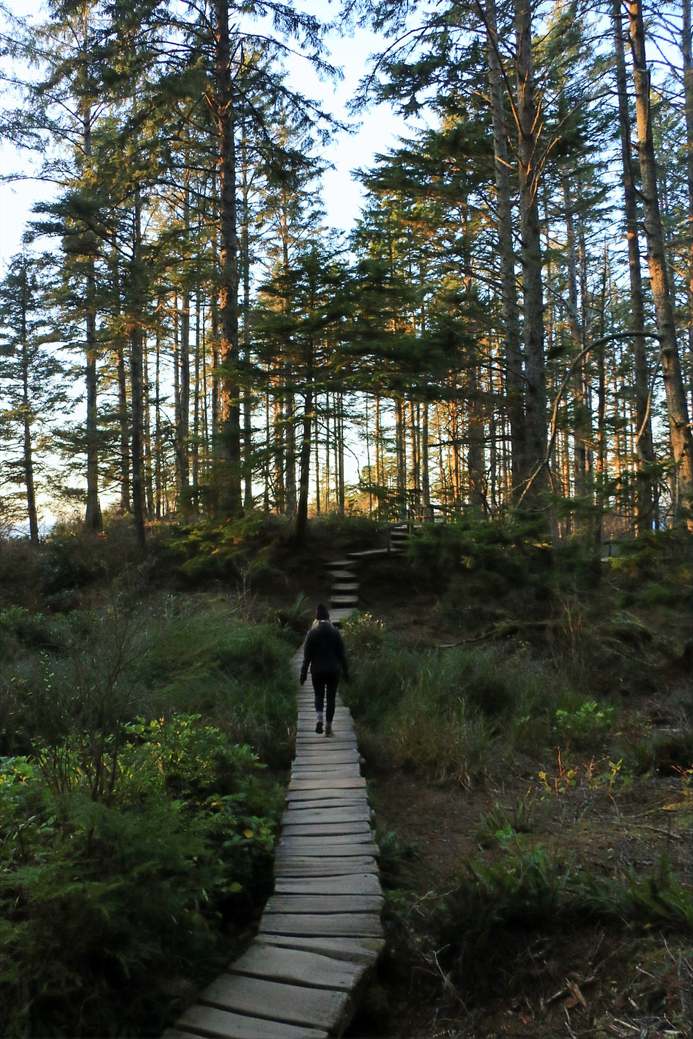 girl walking on boardwalk on cape flattery trail