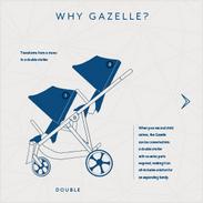 Stroller Infographic