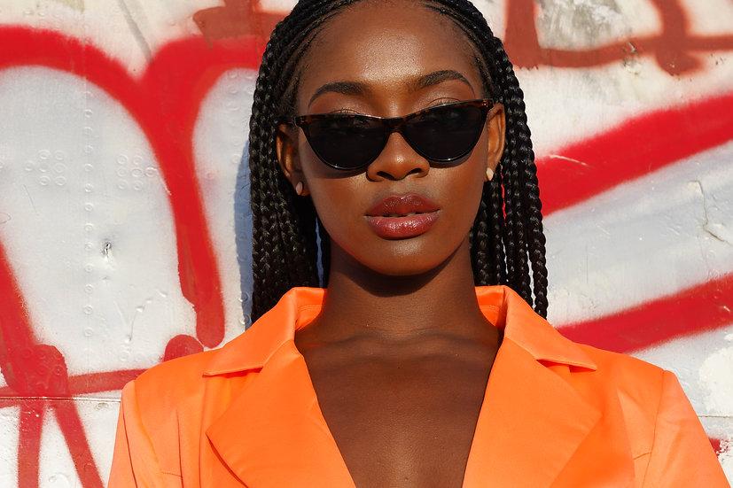 Wildcat Sunglasses