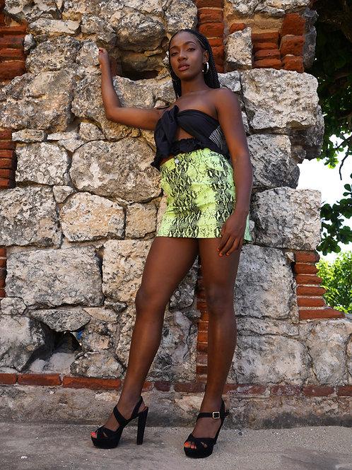 Vicious Skirt