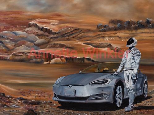 Tesla On Mars