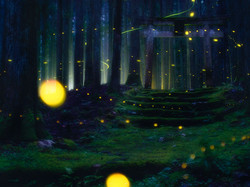 Firefly Residence