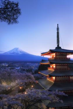 Mt.Fuji and cherry blossoms 2