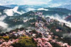 Land Of Mist