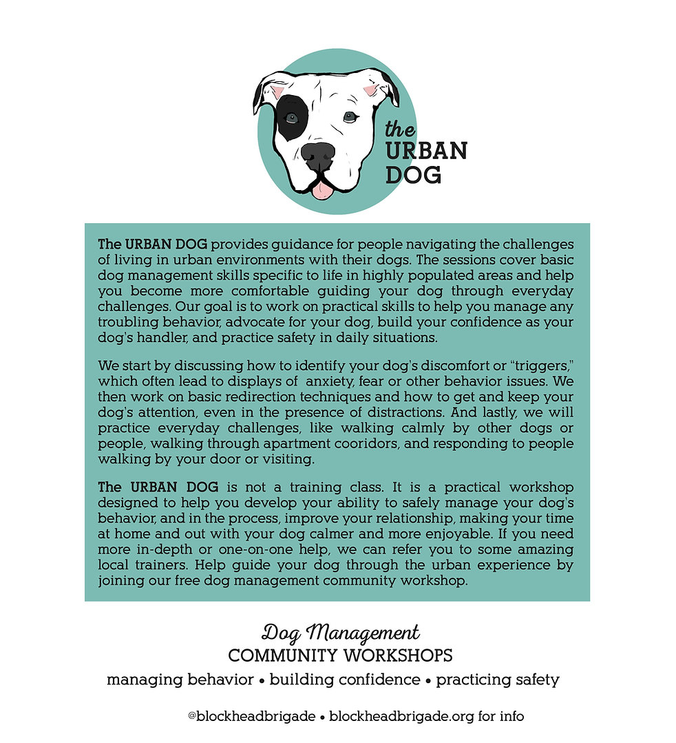 the urban dog5.jpg