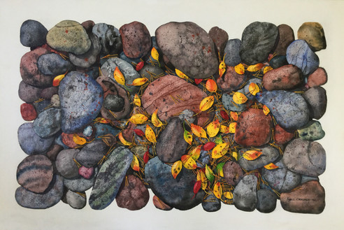 Rocks and Leaves #134