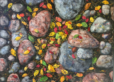 Rocks and Leaves #123