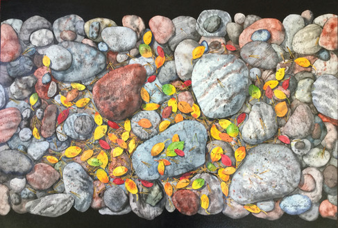 Rocks and Leaves #133