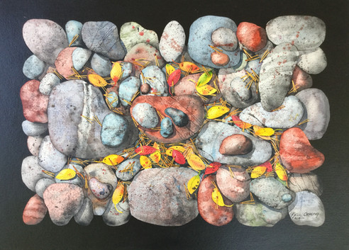 Rocks and Leaves #137