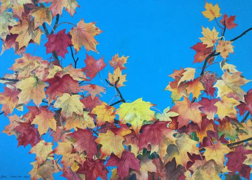 Leaves #130