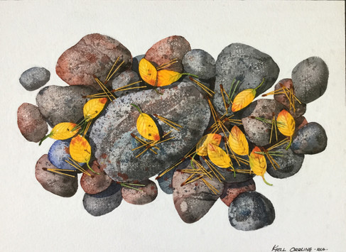Rocks and Leaves #104