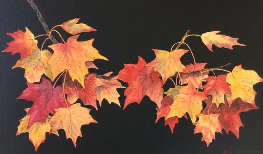 Leaves #119