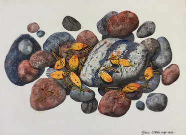 Rocks and Leaves #127