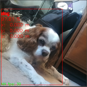 Getting up and running with the OpenCV AI Cameras