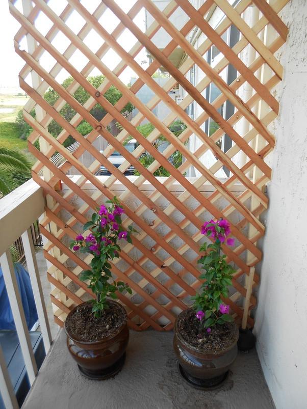 Lattice like frame for terrace