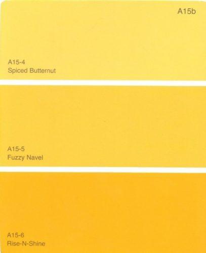 Interior Paint Ideas-Yellow Tones