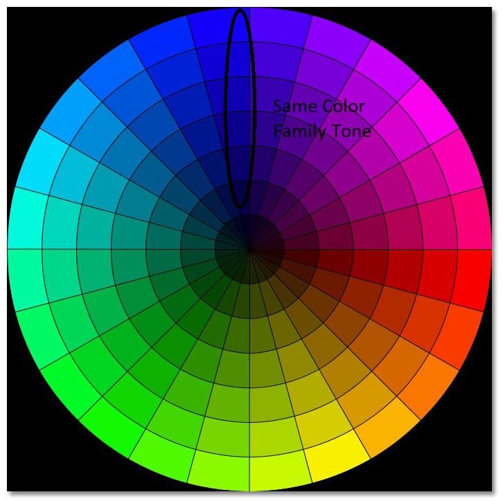 Harmonious Look-Same Family Colors