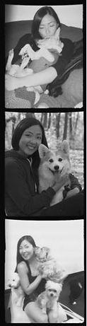 Minneapolis dog walking and running company