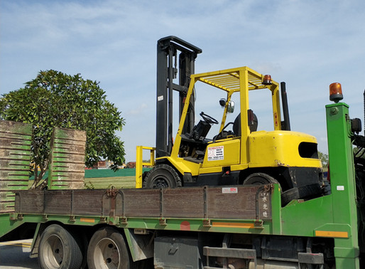 Key Notes For Renting Forklift In Singapore