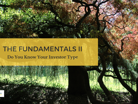 THE FUNDAMENTALS: DO YOU KNOW YOUR INVESTOR TYPE? (PART 2)
