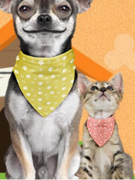 Collier-bandana pour chien/chat