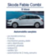 Automobiliu-nuoma-tenerifeje-08.png