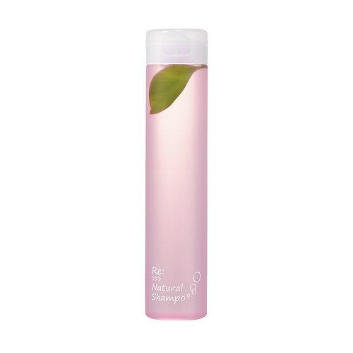 Adjuvant:>>>Natural Shampoo