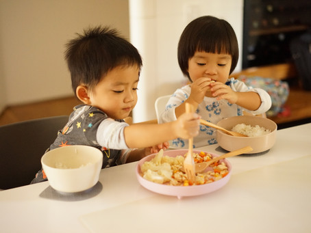Dolphin Vibes x Miniware : Happy Sharing From Minime Twins - Anissa & Brody